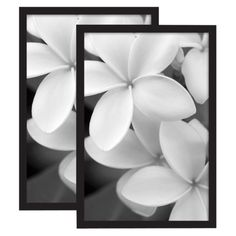 set of 2 gallery poster frame