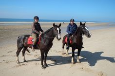 A travel blog about horseriding in Egmond aan den Hoef