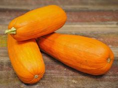 (C. pepo) This heirloom pumpkin variety dates back to at least 1832, when it was grown in Maine.