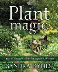 I've been looking all over for this Plant Magic By Sa...!  So happy to have it in our store! http://witchesgrass.com/products/plant-magic-by-sandra-kynes?utm_campaign=social_autopilot&utm_source=pin&utm_medium=pin