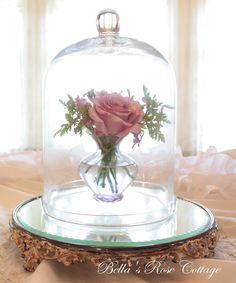 Bella's Rose Cottage: Neptune Under Glass...