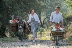The popular show starring Keeley Hawes, Milo Parker and Josh O'Connor is back for its third series The Durrells In Corfu, Gerald Durrell, Bbc Drama, Popular Shows, Movie Gifs, Period Dramas, Movies And Tv Shows, Tv Series, Films