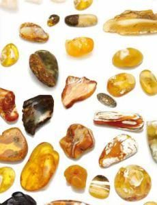 Natural Baltic Amber - Magnetic, Adaptogenic, and Universally Applicable. Informative article by Gail Faith Edwards on the many healing uses of amber (petrified tree sap). Amber Gemstone, Amber Beads, Amber Jewelry, Baltic Sea, Baltic Amber, Herb Farm, Elegant Man, Ambre, Herbal Medicine