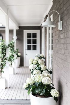 Cottonwood - white hydrangeas & barn lighting