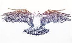 Sketch: Falcon by Emel Mutlucan, via Behance