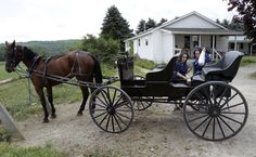 In this July 13, 2011, photo, Amish women shop at an Amish-owned country store in Centerville, N.Y.     Centerville, a town south of Buffalo, has an established Amish community. Longstanding Amish population centers in Pennsylvania and Ohio have lost families, while Amish numbers in New York have boomed in the past two years, according to a new study by Elizabethtown College researchers.