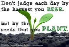 """""""Don't judge each day by the harvest you reap but by the seeds you plant."""" #parenting #quote The Better Mom"""