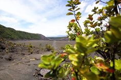 Walking the crater of Kīlauea Iki #hawaiivolcanoesnationalpark #bigisland #hawaii #vscocam #vscotravel #travelgram #wanderlust #naturalbeauty #canon100d #canon #eos100d #volcano #barrenlandscape #kilaueaiki