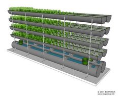 There are several advantages of using aquaponics for your organic gardening. Not only is it easier than a traditional garden, but it is movable and produces protien to consume too. Hydroponic Farming, Aquaponics Greenhouse, Aquaponics Fish, Hydroponics System, Permaculture, Commercial Aquaponics, Organic Nutrients, Vertical Farming, Urban Farming