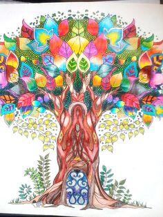 Johanna Basford - enchanted forest - floresta encantada - jardim secreto - secret garden - colouring book