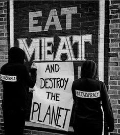 L'agriculture animale et la pollution…une cowspiracy? Why Vegan, Vegan Vegetarian, Animal Liberation, Slogan, Refugees, Vegan Facts, Animal Agriculture, Vegan Quotes, Vegan Humor