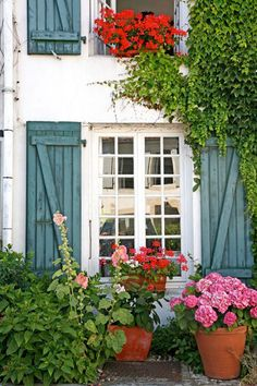 Exterior Shutters for Arched Windows | Photo-nr: 73932