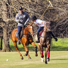 Facu Pieres and Mono during a polo practice.