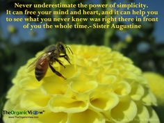 Never underestimate the power of simplicity. Sister Augustine