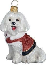 Image result for maltese dog gifts