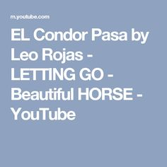 EL Condor Pasa by Leo Rojas - LETTING GO - Beautiful HORSE - YouTube