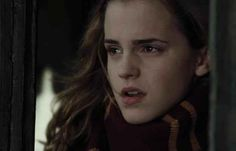 If Hermione Granger was the main character in the Harry Potter series