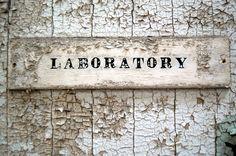 american dreams lab