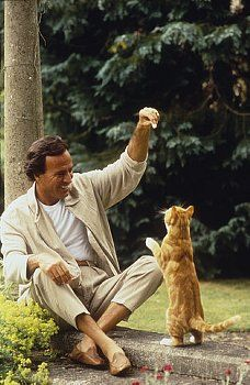 Men with cats. Julio Iglesias and his ginger cat.