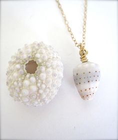 Hawaiian Cone Shell gold necklace - Love this shell!  Only found in Hawaiian waters.