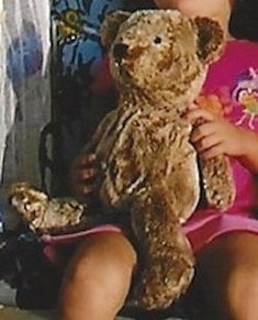 I'm looking for a 2002 large brown teddy bear that I think came with a sheer gold ribbon, probably bought from a Toys R Us, Target or Walmart. Brown Teddy Bear, Special Needs Kids, Our Kids, Priorities, Searching, Plush, Bows, Memories, Future