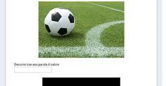 Questionario del calcio