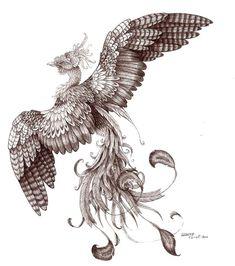 Phoenix uncolored by Liedeke on deviantART
