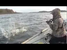 Pike Fishing Tips in Ireland with Expert Gord Burton