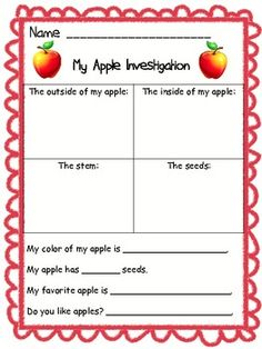 When teaching my unit on apples, I always begin with an investigation.  I give each student (or a group of students) an apple. Using this organizer...