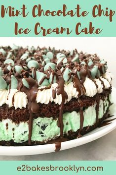 Mint Chocolate Chip Cookies, Cookies And Cream Cake, Chocolate Ice Cream, Chocolate Chip Recipes, Homemade Chocolate, Ice Cream Cake Homemade, Chocolate Buttercream, Chocolate Ganache, Ice Cream Desserts