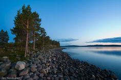 Engerdal, Norway. www.inatur.no/fiske/50e6cc83e4b02b032acfe6be/fiskekort-engerdal-kommune | Inatur.no