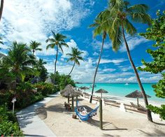 Caribbean destination weddings and honeymoons provide a getaway for every personality and preference.
