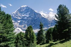 The Eiger in Switzerland. My dog is named after this mountain.