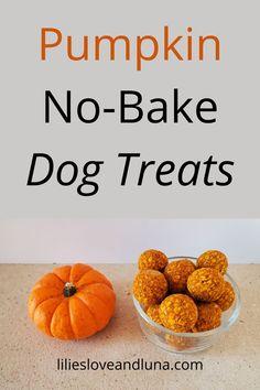 No-bake peanut butter and pumpkin dog treats. Peanut Butter Dog Treats, Pumpkin Dog Treats, Dog Treat Recipes, Pumpkin Spice, Spices, Baking, Breakfast, Fall, Morning Coffee