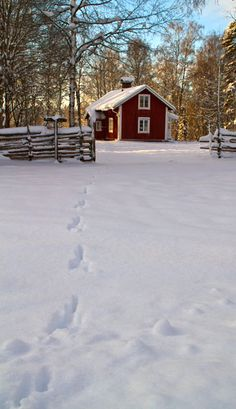 Winter in Småland, Sweden I understand why my ancestors settled in Minnesota. It looked like home. Snow Scenes, Winter Scenes, Red Houses, Sweden Travel, Red Cottage, Reisen In Europa, Snow And Ice, Winter Pictures, Swedish House