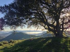 Serenity Swing behind Cal Poly San Luis Obispo... so BLESSED to call this home.♥