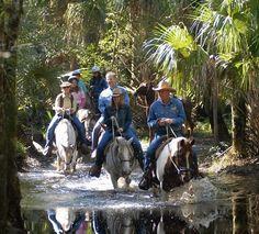 Horseback Riding at Forever Florida Eco-Reserve, Orlando Old Florida, Tampa Florida, Florida Vacation, Florida Travel, Florida Camping, Clearwater Florida, Naples Florida, Central Florida, Florida Trips