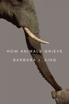 "WHEN ANIMALS MOURN : The breadth and depth of animal grief. ""Writing this book often moved me profoundly; through reading the science literature, conducting interviews with experienced animal caretakers, I came to understand at a new, visceral level just how extensively animals feel their lives. Elephants grieve. Great apes and cetaceans (such as dolphins) grieve. So do horses and rabbits, cats and dogs, even some birds."""