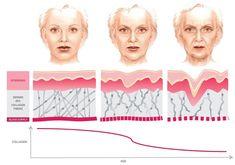 Collagen là gì? Collagen có tác dụng gì cho da mặt?