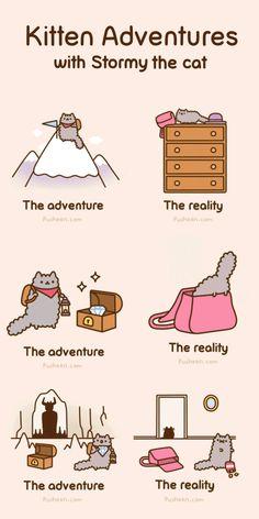 Pusheen, a kitten after my own heart: Adventurous Adventures of Stormy the Cat!