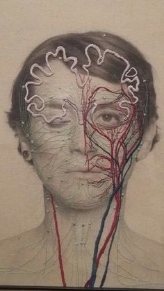 - showing how our bodies can 'create the most intricate of designs' Medical Art, Textiles, Photography Projects, School Photography, A Level Art, Identity Art, Anatomy Art, Foto Art, Ap Art