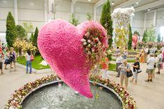 Výstava kvetov a záhrad v Tullne - v meste kvetov *