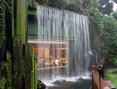 Emmy DE * Dining under a waterfall in a lovely tropical garden, Chi Lin Nunnery, Hong Kong
