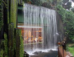 Emmy DE * Dining under a waterfall in a lovely tropical garden, Chi Lin Nunnery, Hong Kong