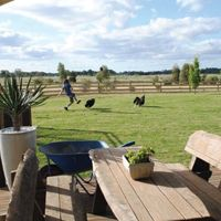 Alan & Kate Morriss from Echuca Testimonial Instant Turf, Sports Turf, Farm Gate, Find Picture, Picnic Table, Things That Bounce, Lawn, Grass, Home And Garden