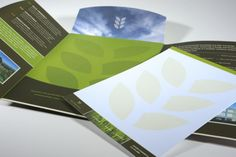 Brochure Design Portfolio: Oak Creek Plaza