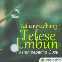 45 Best Mutiara Jawa Images Javanese Quotes Indonesia Allah