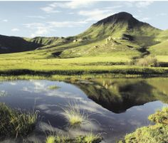 Vrystaat se eie Serengeti | Moolmanshoek-private wildreservaat South Africa, African, Mountains, History, Country, Live, Nature, Travel, Rice
