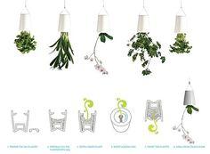 Sky Planter, plantas colgadas de los pulgares