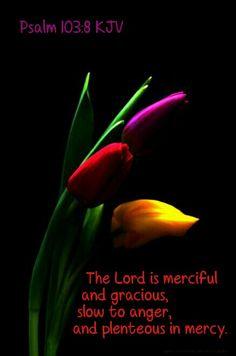Psalm 103:8 KJV